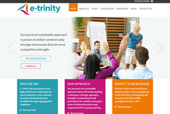 Responsive Wordpress website for Consultancy Firm
